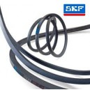 B 1600 SKF